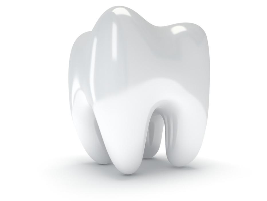 Photo of tooth | Dentist Calgary AB